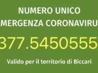 Ecco il numero unico per l'emergenza coronavirus:  377.5450555